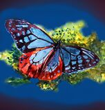 Watercolor painted beautiful butterfly. Beautiful butterfly is drawn in watercolor.