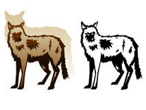Graphic Wolf Illustration Royalty Free Stock Images