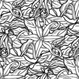 Graphic ylang ylang pattern. Graphic ylang ylang seamless pattern. Vector leaves and flowers. Herbal medicine and aroma therapy. Coloring book page for adults Royalty Free Stock Image