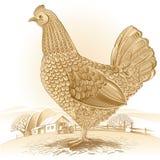 Graphical chicken Stock Photos