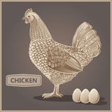Graphical hen and eggs. Graphical decorative hen and eggs royalty free illustration