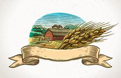 Graphical landscape with a sheaf of wheat. Graphical illustration of a farm with a sheaf of wheat in the foreground and a design element - tapes for inscription Stock Photography
