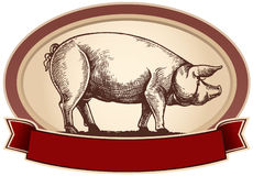 Graphical pig Royalty Free Stock Photo