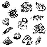 Graphical shells, stones and a fir cone Stock Photos