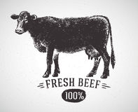 Graphical silhouette cow. Graphical silhouette cow and inscription. Vector illustration, drawn by hand. Can be used as labels and packaging royalty free illustration