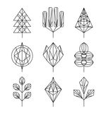 Graphical tree set, hipster linear style Royalty Free Stock Photo