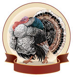 Graphical turkey-cock Royalty Free Stock Photos