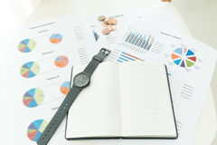 Graphics and finance report Royalty Free Stock Photo
