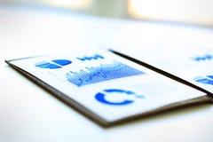 Graphiques de gestion financière Image libre de droits