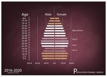 Graphiques 2016-2020 de pyramides de population avec la génération 4 Photo stock