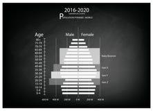 Graphiques 2016-2020 de pyramides de population avec la génération 4 Photographie stock
