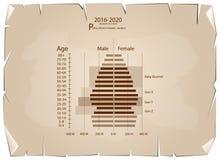 Graphiques 2016-2020 de pyramides de population avec la génération 4 Photo libre de droits