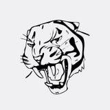 Graphiques tirés par la main de crayon, tête de tigre Gravure, style de pochoir Logo noir et blanc, signe, emblème, symbole estam Photos stock