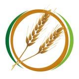 Graphisme de blé Images stock