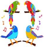 Graphismes colorés d'un vecteur : Perroquets et oiseaux Photo stock