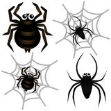 graphismes de vecteur : Araignée et toile d'araignée Images stock