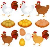 Graphismes de vecteur : Poulet, poule, coq Photographie stock libre de droits