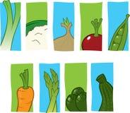 Graphismes végétaux Photos libres de droits