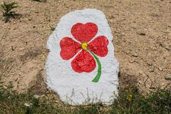 Graphite blooms on stone Stock Photos