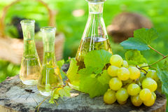 Free Grappa, Liquor From Grapes Stock Image - 59026591
