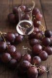 Grappa z winogronem Obraz Royalty Free
