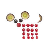 Grappig die dier van bessen en druif wordt gemaakt Royalty-vrije Stock Foto's