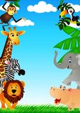 Grappig dier in de wildernis Royalty-vrije Stock Foto