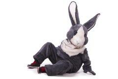 Grappig grijs konijn Royalty-vrije Stock Foto's