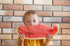 Grappig jong geitje die watermeloen binnen eten Stock Afbeelding