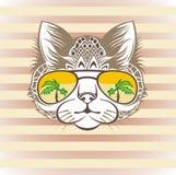 Grappig kattenportret met koele zonnebril, hand getrokken grafische, dierlijke illustratie, t-shirtontwerp Royalty-vrije Stock Foto's