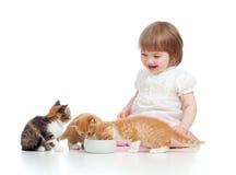 Grappig kindervoedings aantrekkelijk katje stock afbeelding