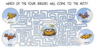 Grappig labyrint met vogels Stock Fotografie