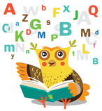 Grappig Owl Learn To Read Book op een Witte Achtergrond Royalty-vrije Stock Foto's