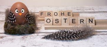 Grappig Pasen-kuiken, frohe ostern stock foto's