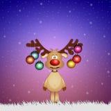 Grappig rendier met Kerstmisballen Royalty-vrije Stock Afbeeldingen