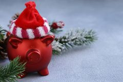 Grappig rood varken royalty-vrije stock afbeelding