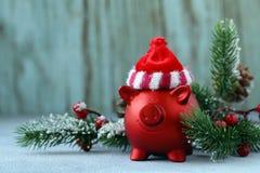 Grappig rood varken royalty-vrije stock foto's