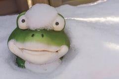 Grappig schot van een kikker die uit de sneeuw kijken stock foto