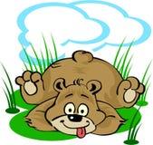 Grappig weinig beer die op het gazon legt Royalty-vrije Stock Foto
