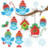 Grappig weinig blauwe Kerstmisvogel in de hoed royalty-vrije stock fotografie