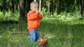 Grappig weinig jongen die van 1.5 jaar paddestoelen in een mand bestuderen stock footage