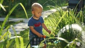 Grappig weinig jongen 1 5 jaar die hosing installaties in de tuin bestuderen stock videobeelden