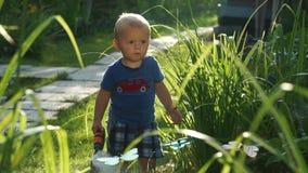 Grappig weinig jongen 1 5 jaar die hosing installaties in de tuin bestuderen stock footage
