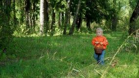Grappig weinig jongen van 1 5 jaar draagt in de paddestoelen in de mand stock video