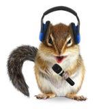 Grappige aardeekhoorn DJ met hoofdtelefoon en microfoon op wit Stock Afbeeldingen