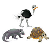 Grappige Australische dieren, struisvogel, schildpad en Komodo-draak Stock Afbeelding