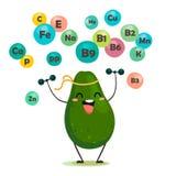 Grappige avocado in beeldverhaalstijl met elementen van zijn vitaminen Vector isoleer in beeldverhaalstijl vector illustratie