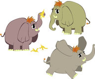 Grappige beeldverhaalolifanten Stock Fotografie