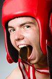 Grappige bokser met het winnen Royalty-vrije Stock Afbeeldingen