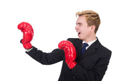 Grappige bokserzakenman Royalty-vrije Stock Fotografie